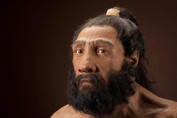 Глава неандерталца (Смитсонијева задужбина).