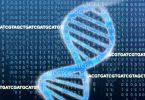ДНК (Џонатан Бели)
