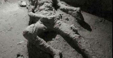 Човек из Помпеје (Википедија)