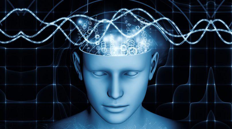 Деловање на мозак (Википедија)