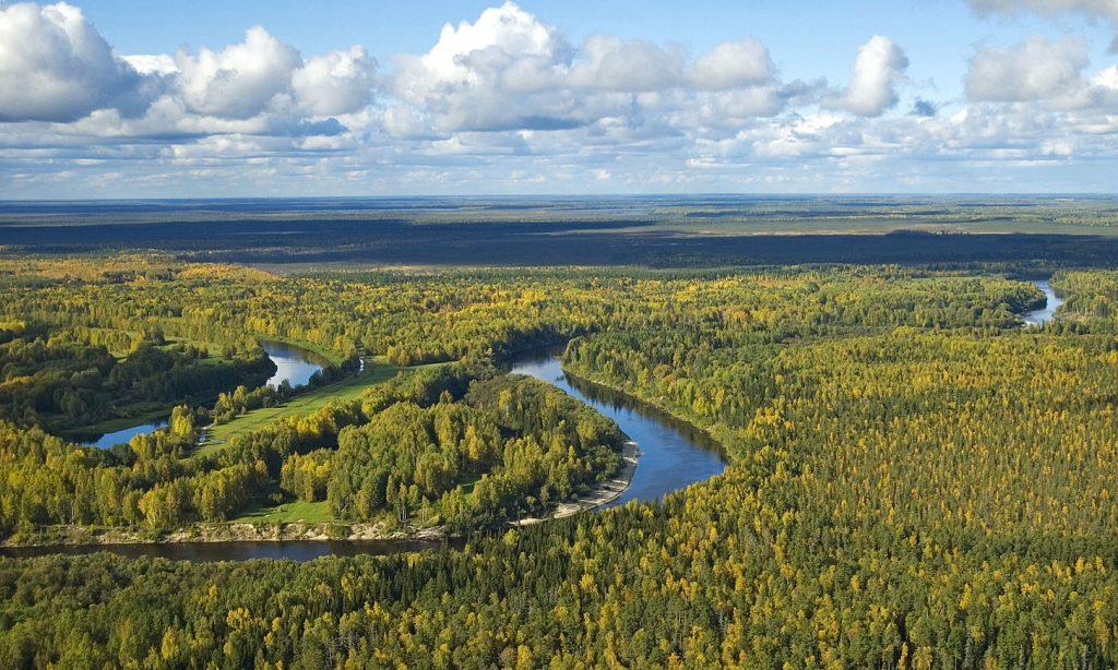 Западни Сибир (Википедија)