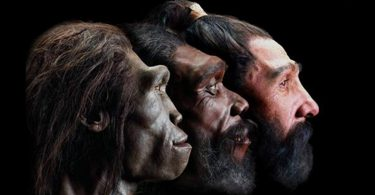Evolutivni skok (Vikipedija)