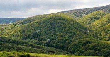 Fruška gora (Vikipedija)