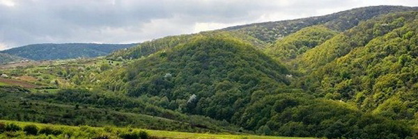 Фрушка гора (Википедија)