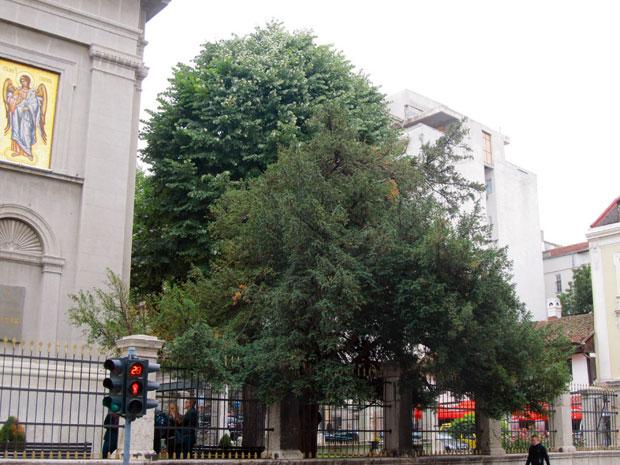 Ispred Saborne crkve u Beogradu (Vikipedija)