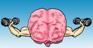 Јачање мозга (Википедија)
