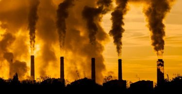 Смртоносно загађење (Википедија)