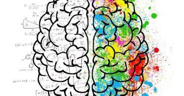 Промењени мозак (Википедија)