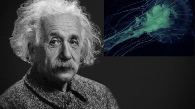 Алберт Ајнштајн (Википедија).