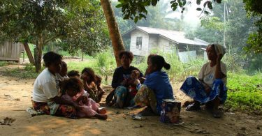 Малено племе (Википедија)