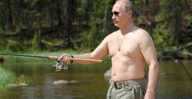 Vladimir Putin (Vikipedija)