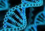 1. ДНК складиште (Википедија)