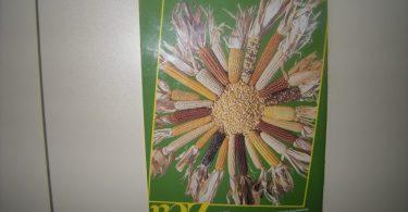 Banka biljnih gena (ilustracija, lična arhiva)