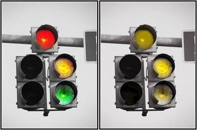 Човек који разликује боје (лево) и далтониста (десно) (Википедија)