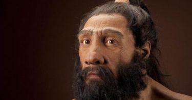 Glava neandertalca (Smitsonijeva zadužbina).