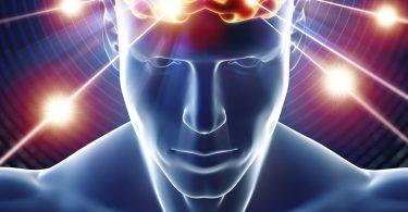 Квантни мозак (Википедија)