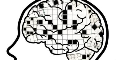 Podmlađivanje mozga (Vebkrosvordkom)