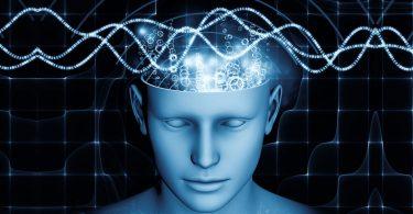 Delovanje na mozak (Vikipedija)