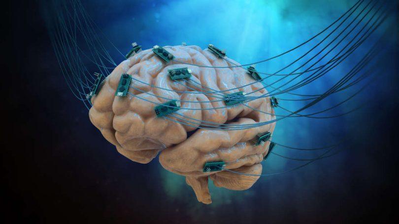 Očitava moždane talase (Vikipedija)