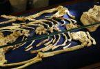 Ceo kostur (Temba Hadebe, AP)
