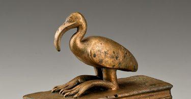 Sarkofag za ibisa (Vikipedija)