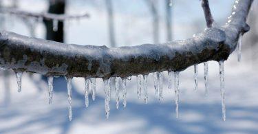 Ледени оков (Википедија)