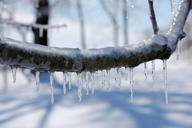 Ledeni okov (Vikipedija)