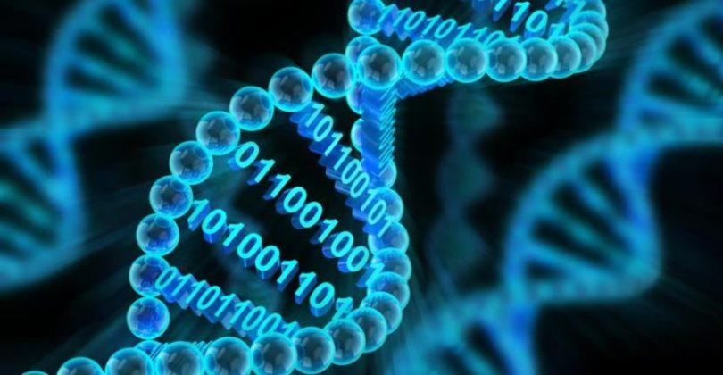 1. DNK skladište (Vikipedija)