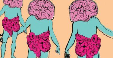 1. Veza creva-mozak.
