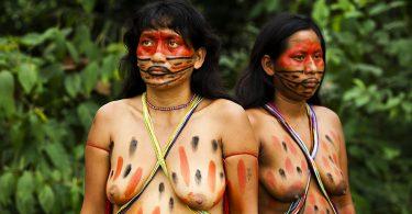 Амазонке с брковима (Википедија)